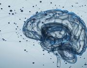 Het neuroplastische effect van elektrische stimulatie